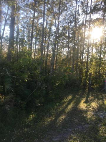 0 Otway Rd, Jacksonville, FL 32246 (MLS #1001582) :: Sieva Realty