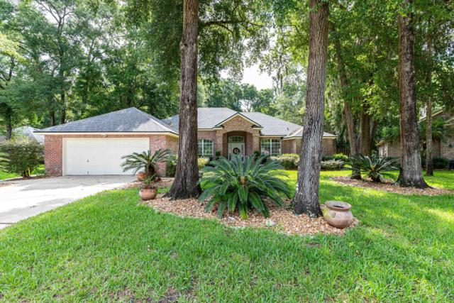 11617 Marsh Elder Dr, Jacksonville, FL 32226 (MLS #1001747) :: The Hanley Home Team