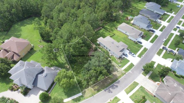 3056 Paddle Creek Dr, GREEN COVE SPRINGS, FL 32043 (MLS #1002001) :: The Hanley Home Team