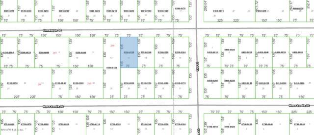 207 Himalayan St, Interlachen, FL 32148 (MLS #1003300) :: Berkshire Hathaway HomeServices Chaplin Williams Realty