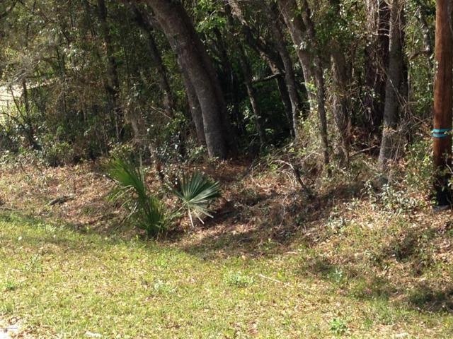 212 Squirrel Tree Trl, Satsuma, FL 32189 (MLS #1003689) :: The Hanley Home Team