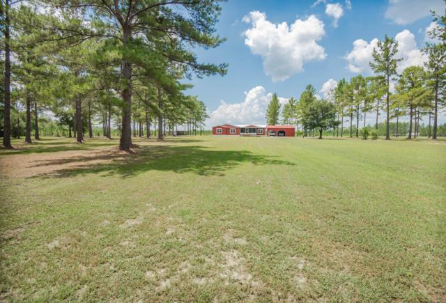 11098 Peacock Creek Rd, Glen St. Mary, FL 32040 (MLS #1003821) :: The Hanley Home Team