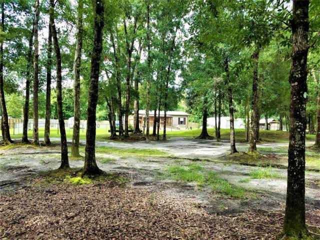 10265 Oliver Ave, Hastings, FL 32145 (MLS #1005072) :: The Hanley Home Team