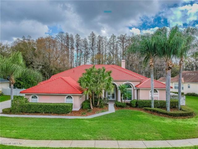3808 Swans Landing Dr, LAND O LAKES, FL 34639 (MLS #1005114) :: EXIT Real Estate Gallery