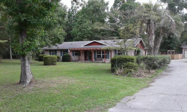 4081 Saddlehorn Trl, Middleburg, FL 32068 (MLS #1006268) :: The Hanley Home Team