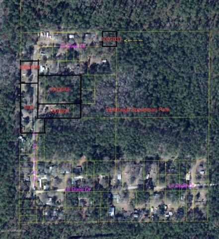 0 Lil Dixie Dr, Sanderson, FL 32087 (MLS #1007031) :: CrossView Realty
