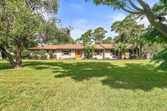 12 Walnut Ln, Ormond Beach, FL 32174 (MLS #1008077) :: The Hanley Home Team