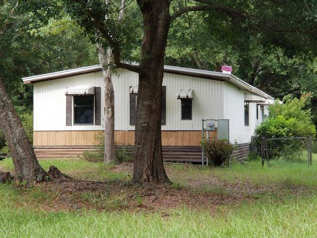 4852 Fireweed St, Middleburg, FL 32068 (MLS #1016061) :: The Hanley Home Team