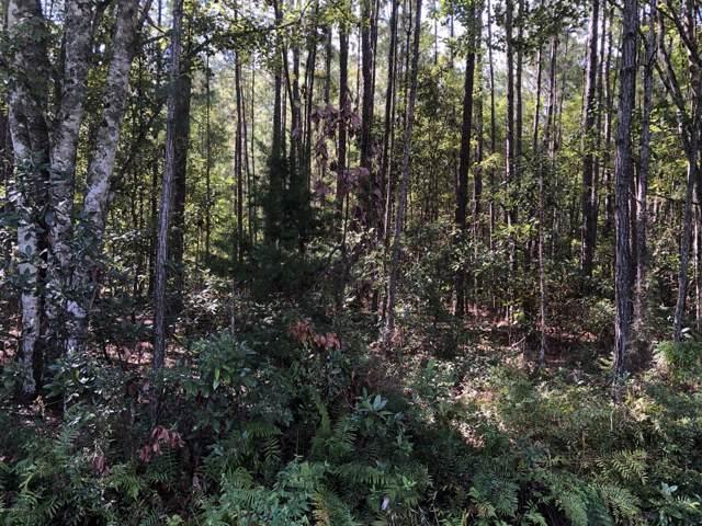 0 S Cisco Gardens Rd, Jacksonville, FL 32219 (MLS #1016550) :: Memory Hopkins Real Estate