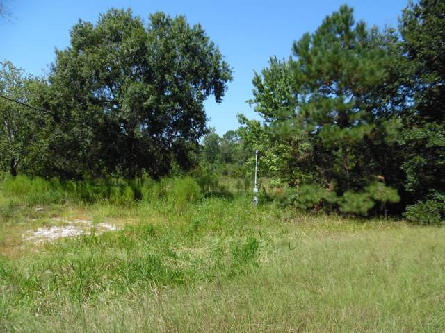 2065 Gentle Breeze Lot #1 Rd, Middleburg, FL 32068 (MLS #1018007) :: CrossView Realty