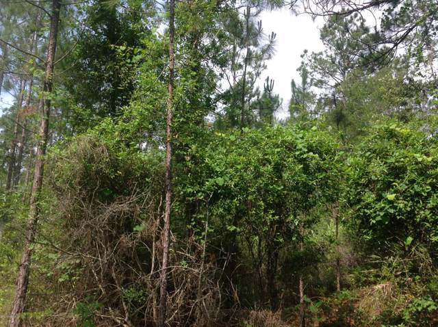 0 Tommy Rd, Glen St. Mary, FL 32040 (MLS #1019405) :: Ancient City Real Estate
