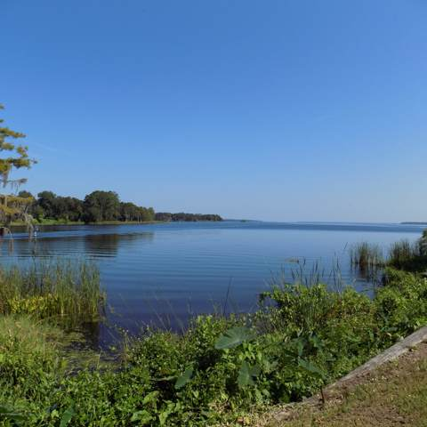 LOT 5 Yacht Club Point, GREEN COVE SPRINGS, FL 32043 (MLS #1019698) :: The Every Corner Team | RE/MAX Watermarke