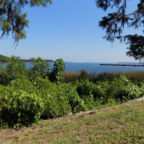 LOT 6 Yacht Club Point, GREEN COVE SPRINGS, FL 32043 (MLS #1019704) :: Berkshire Hathaway HomeServices Chaplin Williams Realty