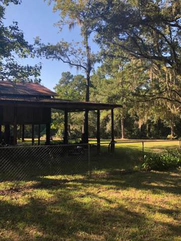 1699 Big Branch Rd, Middleburg, FL 32068 (MLS #1020800) :: Sieva Realty