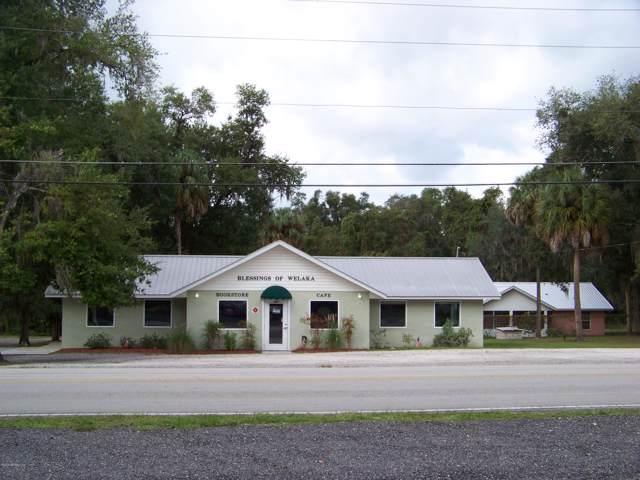 667 3RD Ave, Welaka, FL 32193 (MLS #1020965) :: The Hanley Home Team