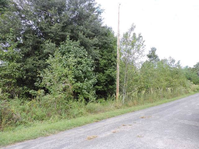 0 Union Rd, Middleburg, FL 32068 (MLS #1022189) :: EXIT Real Estate Gallery