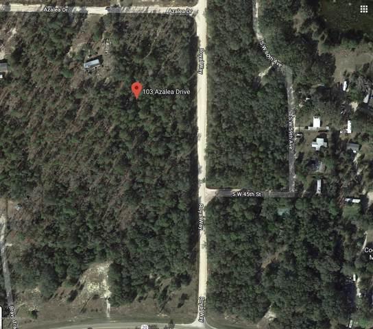 103 Azalea Dr, Hawthorne, FL 32640 (MLS #1024889) :: Berkshire Hathaway HomeServices Chaplin Williams Realty