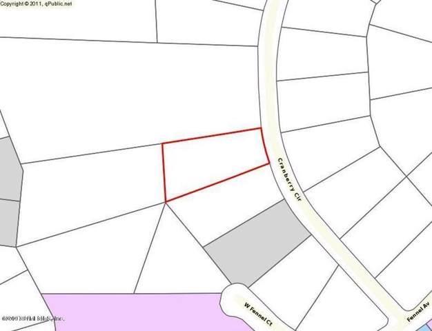 2870 Cranberry Cir, Middleburg, FL 32068 (MLS #1027003) :: Berkshire Hathaway HomeServices Chaplin Williams Realty