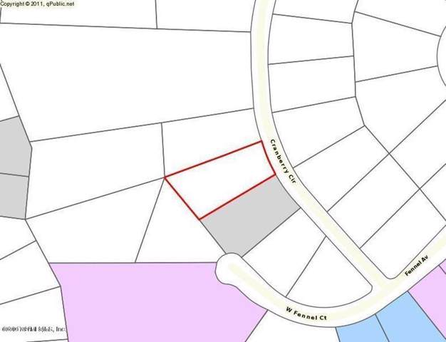 2872 Cranberry Cir, Middleburg, FL 32068 (MLS #1027007) :: Berkshire Hathaway HomeServices Chaplin Williams Realty