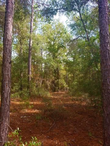 0 Baden Powell Rd, Hawthorne, FL 32640 (MLS #1027641) :: EXIT Real Estate Gallery