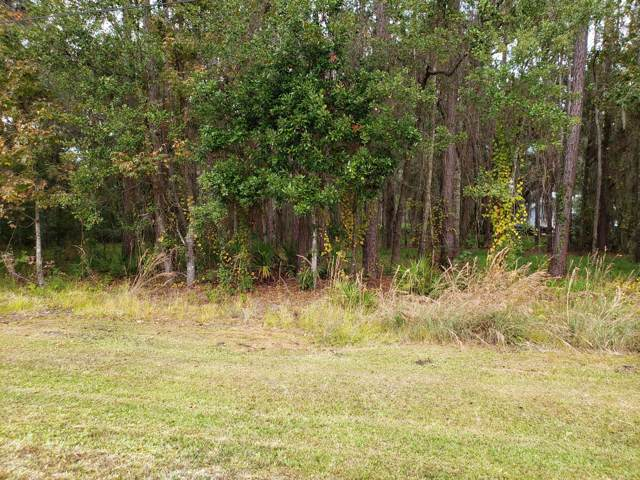 5607 Dianthus St, GREEN COVE SPRINGS, FL 32043 (MLS #1028538) :: The Hanley Home Team