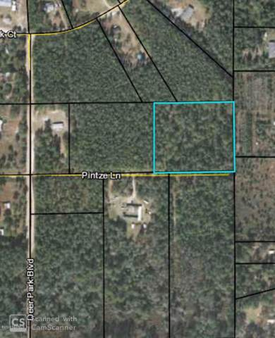 0 Pintze Ln, Middleburg, FL 32068 (MLS #1031931) :: Bridge City Real Estate Co.