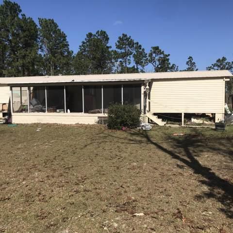 124 Dew Drop Dr, Hawthorne, FL 32640 (MLS #1034395) :: The Hanley Home Team