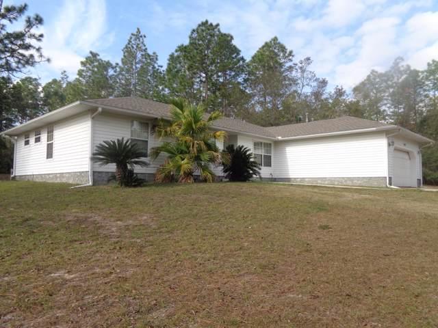 207 Picnic Rd, Interlachen, FL 32148 (MLS #1034762) :: The Hanley Home Team