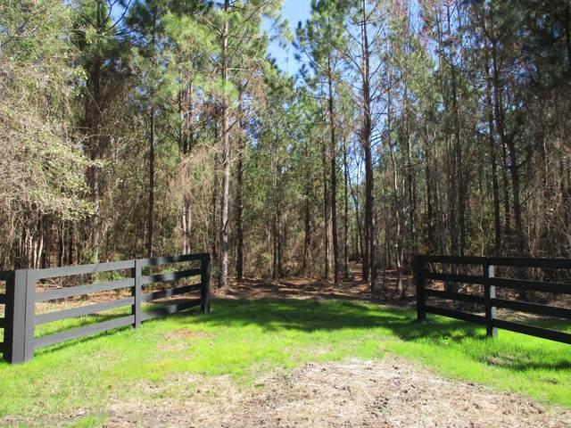 20 ACRES Old Dixie Hwy, Hilliard, FL 32046 (MLS #1037966) :: The Hanley Home Team