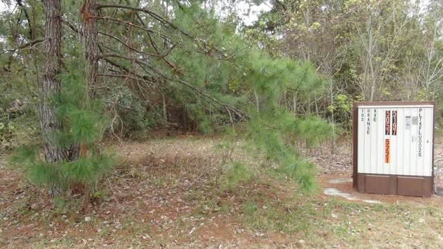 103 Orange Ave, East Palatka, FL 32131 (MLS #1039591) :: Memory Hopkins Real Estate