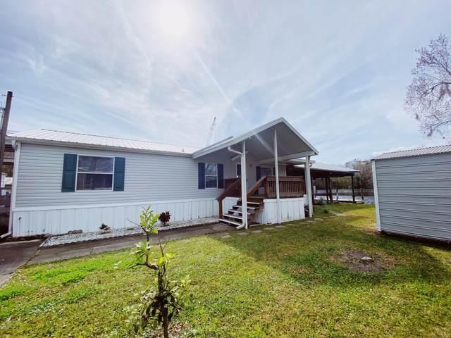 156 Magnolia Trl, Satsuma, FL 32189 (MLS #1040197) :: The Volen Group | Keller Williams Realty, Atlantic Partners