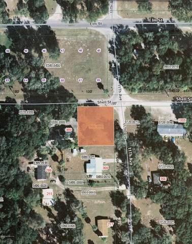 1001 Shell St, Welaka, FL 32193 (MLS #1041944) :: Oceanic Properties