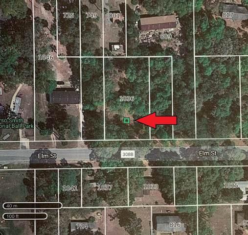 1036 Elm St, Welaka, FL 32193 (MLS #1041951) :: Oceanic Properties