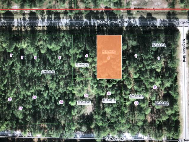 227 Georgetown Denver Rd, Georgetown, FL 32139 (MLS #1042122) :: Oceanic Properties