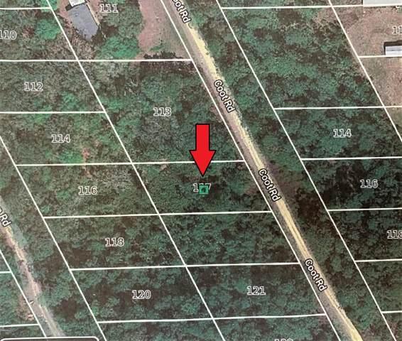 117 Coot Rd, Satsuma, FL 32189 (MLS #1042222) :: The Hanley Home Team