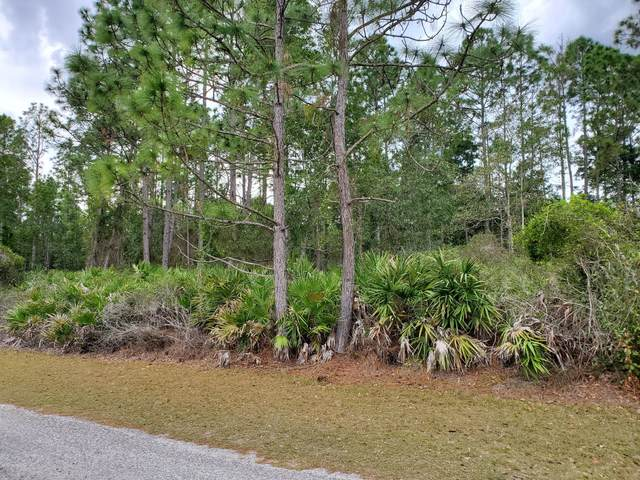 109 W Janet Dr, Crescent City, FL 32112 (MLS #1042958) :: The Hanley Home Team