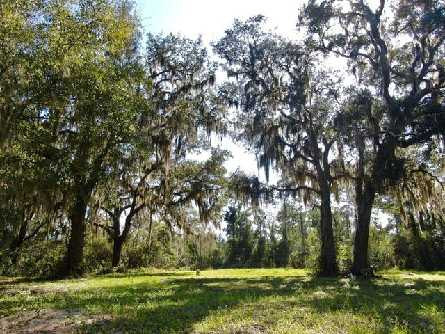 29318 Grandview Manor, Yulee, FL 32097 (MLS #1043706) :: Noah Bailey Group