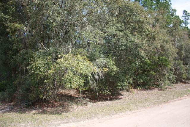 7649 Grand Mesa Ave, Keystone Heights, FL 32656 (MLS #1044003) :: CrossView Realty