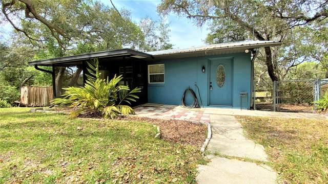 7041 King St, Keystone Heights, FL 32656 (MLS #1045133) :: Memory Hopkins Real Estate