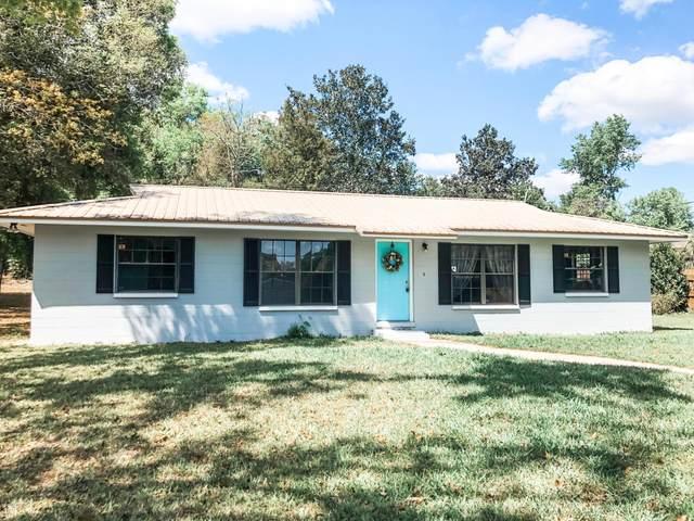377 SE 42ND St, Keystone Heights, FL 32656 (MLS #1046213) :: The Hanley Home Team