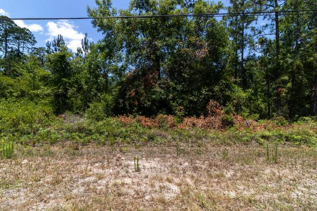2226 S Cocoa Ave, Middleburg, FL 32068 (MLS #1055254) :: Summit Realty Partners, LLC