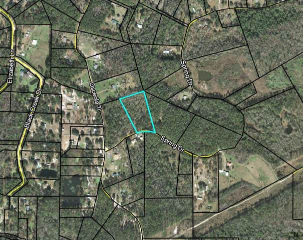 0 Spring Dr, Middleburg, FL 32068 (MLS #1055542) :: CrossView Realty