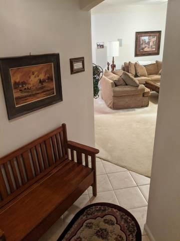 785 Oakleaf Plantation Pkwy #1114, Orange Park, FL 32065 (MLS #1055694) :: CrossView Realty