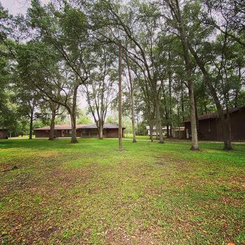 13958 NE 140TH Ln, Waldo, FL 32694 (MLS #1056799) :: Memory Hopkins Real Estate