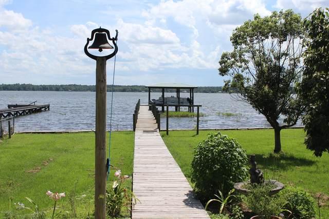 207 Beach Dr, Florahome, FL 32140 (MLS #1060456) :: The Hanley Home Team