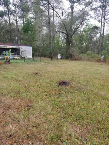 800 Ridgeline Rd, Satsuma, FL 32189 (MLS #1062832) :: The Every Corner Team
