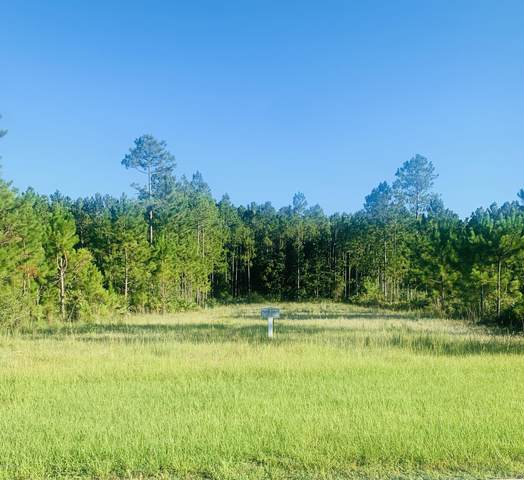 11381 Saddle Club Dr, Jacksonville, FL 32219 (MLS #1064037) :: The Hanley Home Team