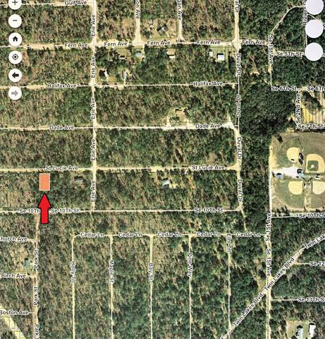 00 St. Lucie Ave, Interlachen, FL 32148 (MLS #1066686) :: The Every Corner Team