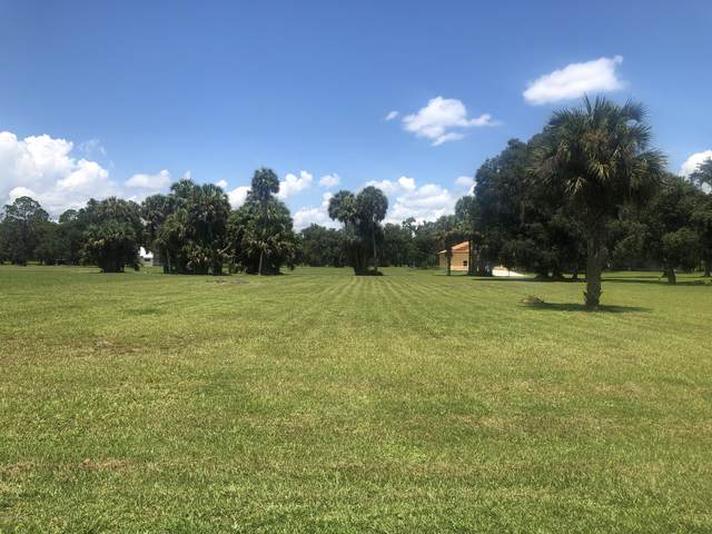 120 Temple Mound, Crescent City, FL 32112 (MLS #1066715) :: The Perfect Place Team