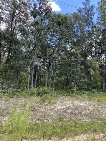 330 Janet Ave, Interlachen, FL 32148 (MLS #1068155) :: Memory Hopkins Real Estate
